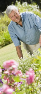 Senior man working in garden using trowel